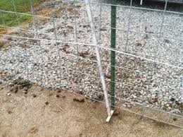 Electric Fence Wars Ohio Ag Net Ohio S Country Journal