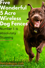 Five Wonderful 5 Acre Wireless Dog Fences Number 1 Is Absolutely Stunning Pet Lover Guy