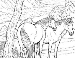 Meisje Met Paard Kleurplaat Kleurplaatje Nl
