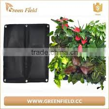 new products whole living wall