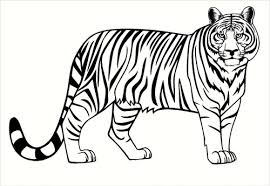 Tiger Jungle Animal Vinyl Wall Art Wall Decal Stickers For Home Decor 37x23 Inch
