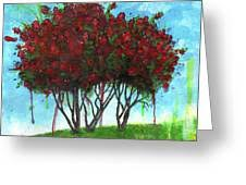 Summer Crape Myrtle Painting by Richardson Comly