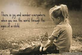 sunday quotes joy and wonder the conscious cat