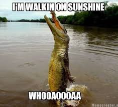 "And don't it feel good? HEY! Alright now."" #Gators #funny #smile ..."