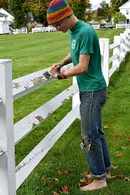 Basic Tips For Painting Your Wood Fence Networx