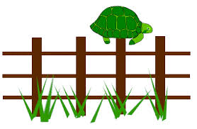 Theology Tuesday If A Turtle Were On A Fence Post Becky Emerick