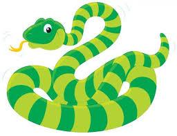 Green Striped Snake Wall Decal Wallmonkeys Com