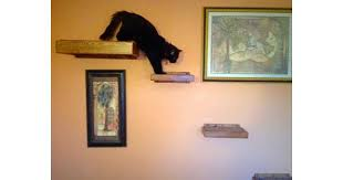 4 floating cat wall shelves