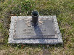 Myrtle Wilson Beasley Cruitt Jacobs (1928-2001) - Find A Grave Memorial