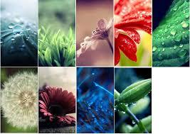 9 beautiful nature wallpapery