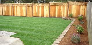 13 Backyard Fencing Ideas Lawnstarter