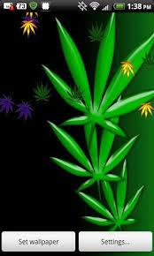 bigger weed live wallpaper 420 pot