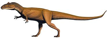 Allosaurus jimmadseni - Dinosaur National Monument (U.S. National Park  Service)