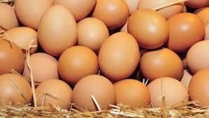 ביצים - EatWell
