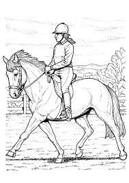 Kleurplaat Paard Rijden Gratis Kleurplaten Om Te Printen