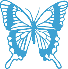 Amazon Com Butterfly Vinyl Decal 8 Inches For Cars Trucks Windows Laptops Tablets Outdoor Grade 2 5mil Thick Vinyl Sky Blue Kitchen Dining