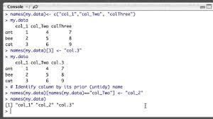 renaming columns in r dataframes