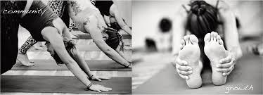 vinyasa arts yoga and zakti 360