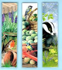bluerobin badger garden lover bird