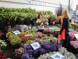 sydney flower market ping in