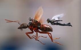 ant man and the wasp 4k hd wallpaper