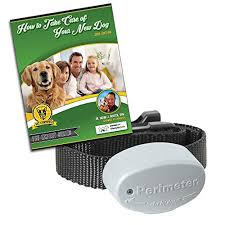 Invisible Fence R21 Compatible Dog Fence Buy Online In Brunei At Desertcart