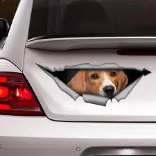 Beagle Car Decal Vinyl Decal Car Decoration Funny Decal Etsy