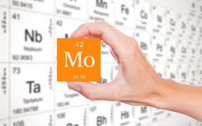 molybdenum deficiencies health