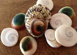 shiva eye seashell jewellery pendants
