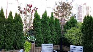 garden designers nyc new york
