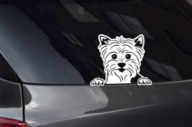 Yorkie Puppy Looking Out Window Decal