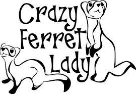 Amazon Com Yilooom Crazy Ferret Lady Decal Window Bumper Sticker Car Decor Pet Ferrets Love Furry Kitchen Dining