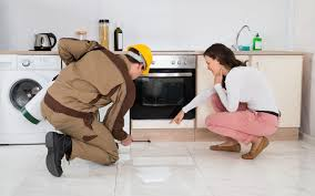 1 Pest Control Services In Abu Dhabi | Pest Control In Al Ain | Anti  Termites Services In Abu Dhabi