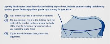 measuring your horse for a rug