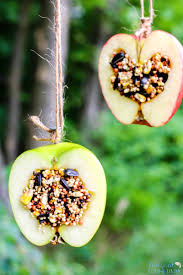 How To Make Apple Birdseed Homemade Bird Feeders Everyone Loves Natural Beach Living