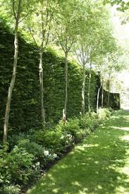 Along Back Fence 95 Extraordinary Privacy Fence Line Landscaping Design Ideas Pag Small Backyard Landscaping Backyard Landscaping Designs Privacy Landscaping