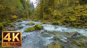 Beautiful Nature Video In 4k Ultra Hd Autumn River Sounds 5