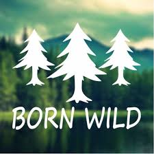 Decal Born Wild Pine Trees Decal Car Decal Laptop Decal Macbook Decal Ipad Decal Car Decals Ipad Decal Tree Decals