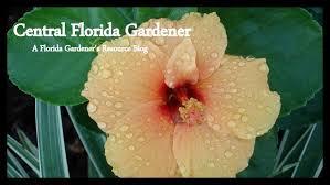 central florida gardener time to start