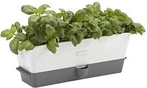 com cole mason fresh herb
