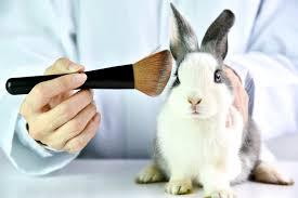 testing makeup saubhaya makeup