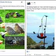 examples of seasonal nz gbs facebook
