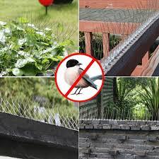Greenwind 5m Pack Fence Wall Spikes Garden Intruder Bird Cat Repellent Burglar Anti Climb Lazada Ph