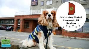 dog friendly newport ri hotels