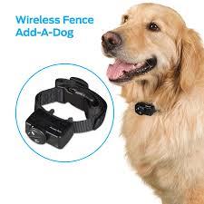 Premier Pet Wireless Add A Dog Collar Additional Or Replacement Collar Walmart Com Walmart Com