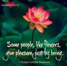 flowers quote via facebook com incrediblejoy flower quotes