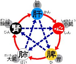 漢方薬のことなら神戸市東灘区 井口薬局 元気創造ブログ 季節のコラム