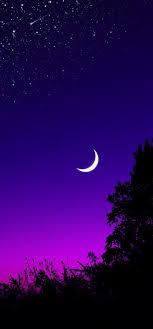 1080x2312 half moon starry night