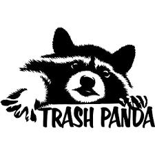Amazon Com Donl9bauer Sticker Raccoon Window Sticker Car Sticker Raccoon Car Decal Funny Sticker Home Improvement