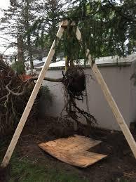 Building A Tripod Hoist To Move A Tree Homeimprovement